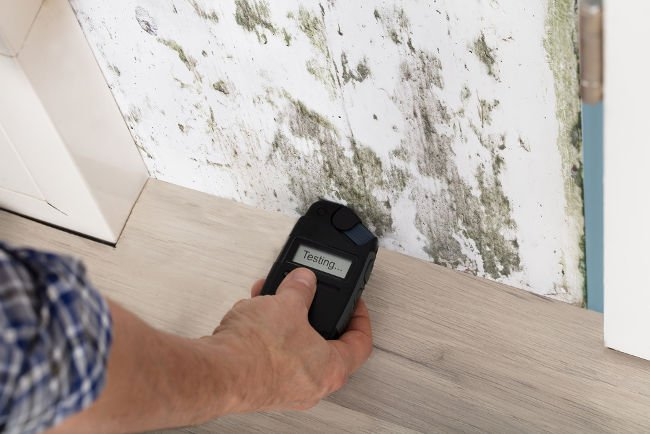 Moisture testing can help you identify problems before they become massive.
